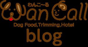 Wan Call Blog